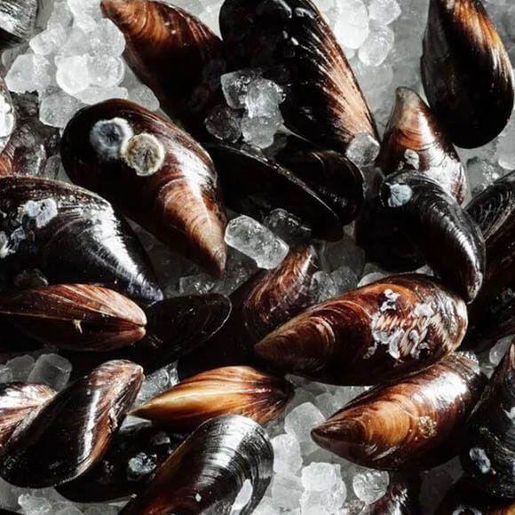 Мидии черноморские купить в Одессе с доставкой | Магазин морепродуктов Купи ракушку