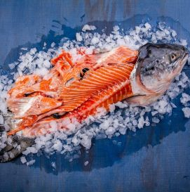 Голова-хвост лосося