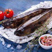 Бычок (кнут) Черноморский    Купить рыбу с доставкой в Одессе (2)