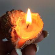 Свеча романтическая в ракушке рапаны (5)