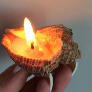 Свеча романтическая в ракушке рапаны (4)