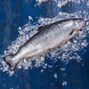 Купить лосось в Одессе   Замороженная и охлажденная рыба с доставкой (6)