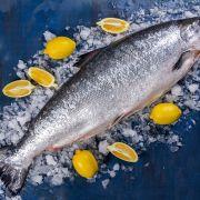Купить лосось в Одессе   Замороженная и охлажденная рыба с доставкой (4)