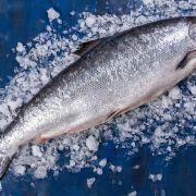 Купить лосось в Одессе   Замороженная и охлажденная рыба с доставкой (3)