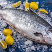 Купить лосось в Одессе   Замороженная и охлажденная рыба с доставкой (2)