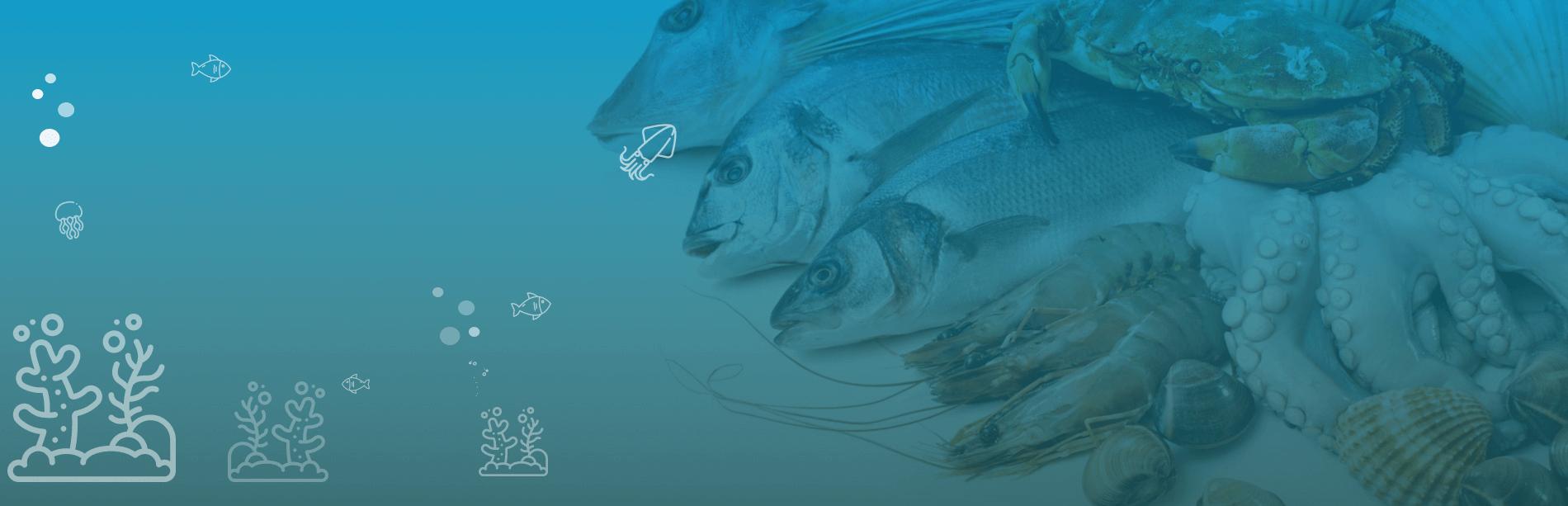 Мясо, рыба и морепродукты в Одессе